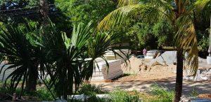 Condominios-New-Life-PANELCONSA-Honduras-15-300x146